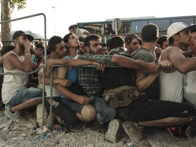 Refugiados-Portal-Conservador